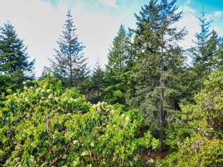 Photo 24: 3492 Sunheights Dr in : La Walfred House for sale (Langford)  : MLS®# 876099