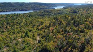 Photo 5: 2014 Myra Road in Porters Lake: 31-Lawrencetown, Lake Echo, Porters Lake Vacant Land for sale (Halifax-Dartmouth)  : MLS®# 202125407
