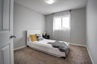 Photo 25: 304 Chinook Gate Close SW: Airdrie Detached for sale : MLS®# A1098545