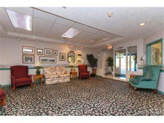 Photo 13: 103 1485 Garnet Rd in VICTORIA: SE Cedar Hill Condo for sale (Saanich East)  : MLS®# 677194