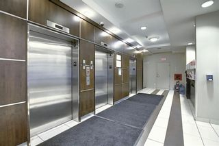Photo 19: 1216 8710 Horton Road SW in Calgary: Haysboro Apartment for sale : MLS®# A1144532