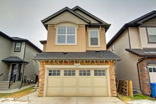Photo 1: 356 SKYVIEW SHORES Manor NE in Calgary: Skyview Ranch Detached for sale : MLS®# C4277892