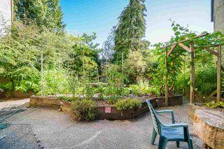 Photo 14: 308 1040 KING ALBERT AVENUE in Coquitlam: Central Coquitlam Condo for sale : MLS®# R2480296