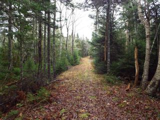 Photo 6: 331 Highway in Voglers Cove: 405-Lunenburg County Vacant Land for sale (South Shore)  : MLS®# 201601512