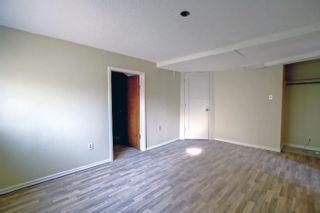 Photo 20: 10061 94 Street NW in Edmonton: Zone 13 House for sale : MLS®# E4266327