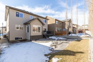 Photo 46: 117 PANATELLA Green NW in Calgary: Panorama Hills Detached for sale : MLS®# A1080965