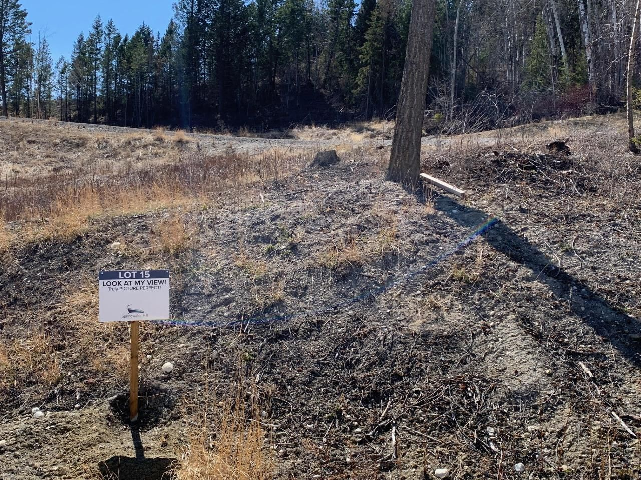 Main Photo: Lot 15 - 6200 COLUMBIA LAKE ROAD in Fairmont Hot Springs: Vacant Land for sale : MLS®# 2457892