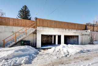 Photo 20: 7412 FARRELL Road SE in Calgary: Fairview Detached for sale : MLS®# A1062617
