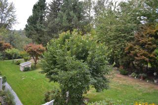 Photo 27: 318 11605 227 Street in Maple Ridge: East Central Condo for sale : MLS®# R2495059
