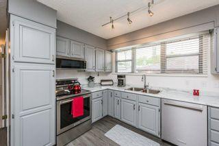 Photo 16: 9132 142 Street in Edmonton: Zone 10 House for sale : MLS®# E4246737