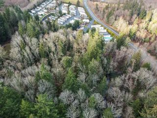 Photo 6: 890 Homewood Rd in : CR Campbell River Central Multi Family for sale (Campbell River)  : MLS®# 862358