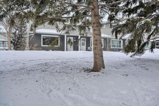 Photo 4: 231 Regal Park NE in Calgary: Renfrew Row/Townhouse for sale : MLS®# A1068574