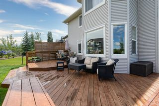 Photo 42: 88 COUGARSTONE Manor SW in Calgary: Cougar Ridge Detached for sale : MLS®# A1022170