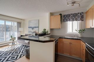 Photo 11: 312 1029 14 Avenue SW in Calgary: Beltline Apartment for sale : MLS®# A1148172