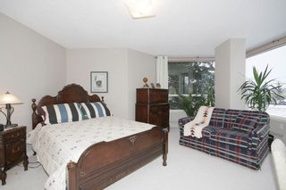Photo 37: # 204 2425 90 Avenue SW in Calgary: Palliser Condo for sale : MLS®# C3646475