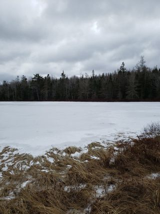 Photo 3: Lots Melrose Country Harbour Road in Country Harbour: 303-Guysborough County Vacant Land for sale (Highland Region)  : MLS®# 202102147