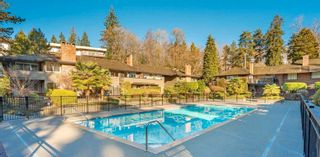 """Main Photo: 905 235 KEITH Road in West Vancouver: Cedardale Townhouse for sale in """"SPRUAWAY GARDENS"""" : MLS®# R2602735"""