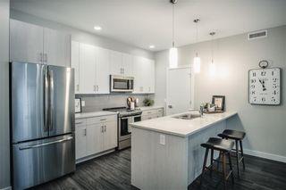Photo 4: 313 1505 Molson Street in Winnipeg: Oakwood Estates Condominium for sale (3H)  : MLS®# 202121264