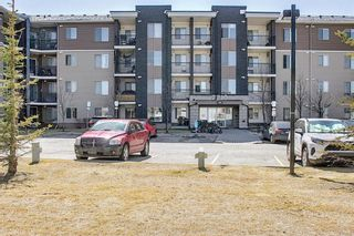 Main Photo: 215 7210 80 Avenue NE in Calgary: Saddle Ridge Apartment for sale : MLS®# A1091258