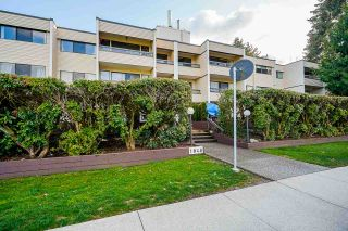 """Photo 3: 204 1048 KING ALBERT Avenue in Coquitlam: Central Coquitlam Condo for sale in """"BLUE MOUNTAIN MANOR"""" : MLS®# R2560966"""