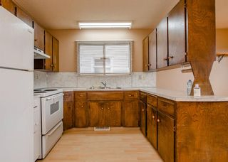 Photo 9: 141 40th Avenue SW in Calgary: Parkhill Detached for sale : MLS®# A1107597