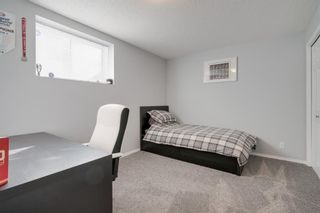 Photo 31: 19 Chapman Close SE in Calgary: Chaparral Detached for sale : MLS®# A1053108