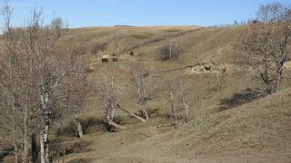Photo 21: SE 35-20-2W5: Rural Foothills County Residential Land for sale : MLS®# A1101395