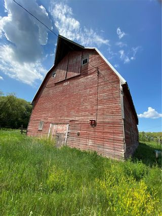 Photo 6:  in Killarney: Agriculture for sale : MLS®# 202116569