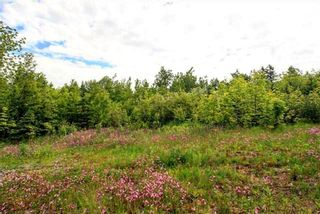 Photo 1: LOT Prospect Road in Rockland: 404-Kings County Vacant Land for sale (Annapolis Valley)  : MLS®# 202102665
