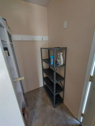 Photo 5: 11603 102 Street NW in Edmonton: Zone 08 House for sale : MLS®# E4253279