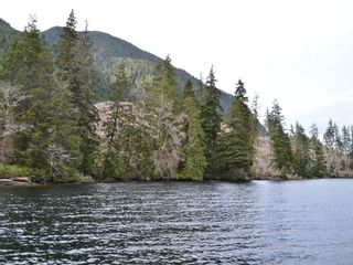 Photo 8: LT 2 Neroutsos Inlet in : NI Port Hardy Land for sale (North Island)  : MLS®# 859849