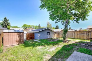 Photo 29: 3423 30A Avenue SE in Calgary: Dover Detached for sale : MLS®# A1114243