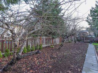 Photo 7: 638 Woodland Dr in COMOX: CV Comox (Town of) House for sale (Comox Valley)  : MLS®# 832419
