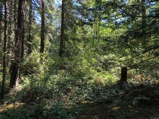 Photo 4: Lot B Southey Point Rd in : GI Salt Spring Land for sale (Gulf Islands)  : MLS®# 880206
