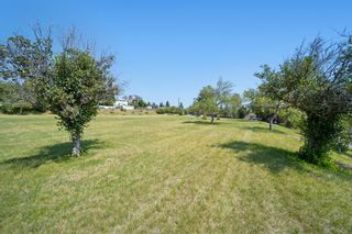 Photo 43: 7420 Hunterburn Hill NW in Calgary: Huntington Hills Detached for sale : MLS®# A1123049