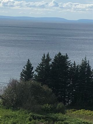 Photo 4: 81 Lakeshore Drive in Irish Cove: 207-C. B. County Vacant Land for sale (Cape Breton)  : MLS®# 202017903