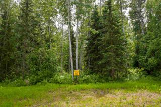 "Photo 7: 8 3000 DAHLIE Road in Smithers: Smithers - Rural Land for sale in ""Mountain Gateway Estates"" (Smithers And Area (Zone 54))  : MLS®# R2280427"