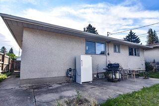 Photo 5: 3127 Rae Crescent SE in Calgary: Albert Park/Radisson Heights Detached for sale : MLS®# A1143749