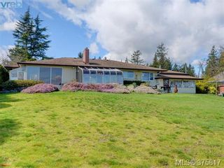 Photo 18: 6711 Welch Rd in SAANICHTON: CS Martindale House for sale (Central Saanich)  : MLS®# 754406