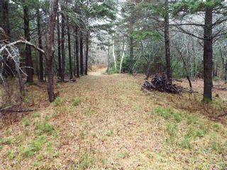 Photo 5: 331 Highway in Voglers Cove: 405-Lunenburg County Vacant Land for sale (South Shore)  : MLS®# 201601512