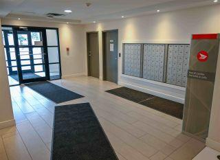Photo 34: 501 10909 103 Avenue in Edmonton: Zone 12 Condo for sale : MLS®# E4248397