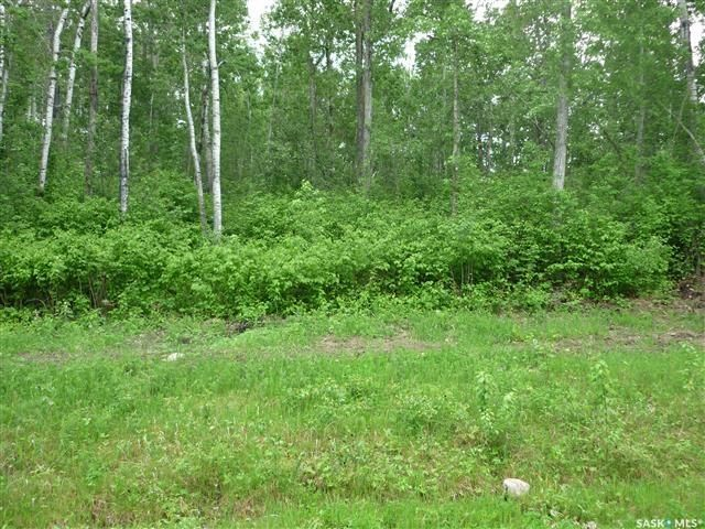 Main Photo: 1 Smits Avenue in Codette: Lot/Land for sale : MLS®# SK834450