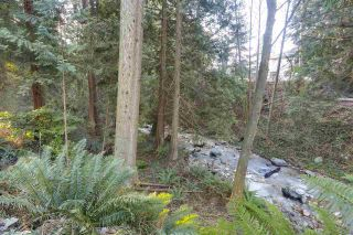 Photo 18: 3275 BROOKRIDGE DRIVE in North Vancouver: Edgemont House for sale : MLS®# R2332886