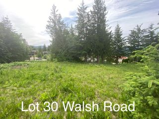 Photo 7: 30 Walsh Road in Blind Bay: SHUSWAP LAKE ESTATES Vacant Land for sale : MLS®# 10235083