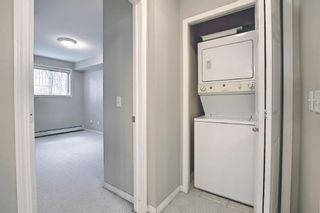 Photo 25: 112 630 8 Avenue in Calgary: Downtown East Village Apartment for sale : MLS®# A1102869