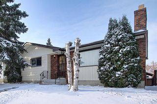 Photo 1: 4323 49 Street NE in Calgary: Whitehorn Detached for sale : MLS®# A1043612