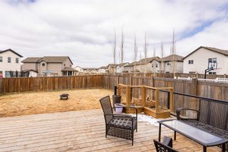 Photo 36: 6120 18 Avenue in Edmonton: Zone 53 House for sale : MLS®# E4254367