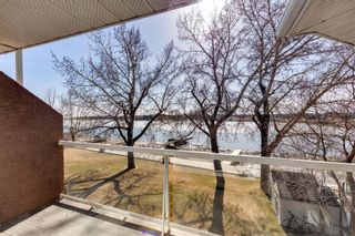 Photo 20: 117 East Chestermere: Chestermere Semi Detached for sale : MLS®# A1091135
