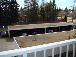 Photo 25: 304 14825 51 Avenue in Edmonton: Zone 14 Condo for sale : MLS®# E4244015