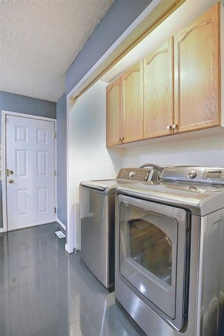 Photo 30: 328 Templeton Circle NE in Calgary: Temple Detached for sale : MLS®# A1074791